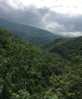 View from the Kaaterskill Falls viewing platform.