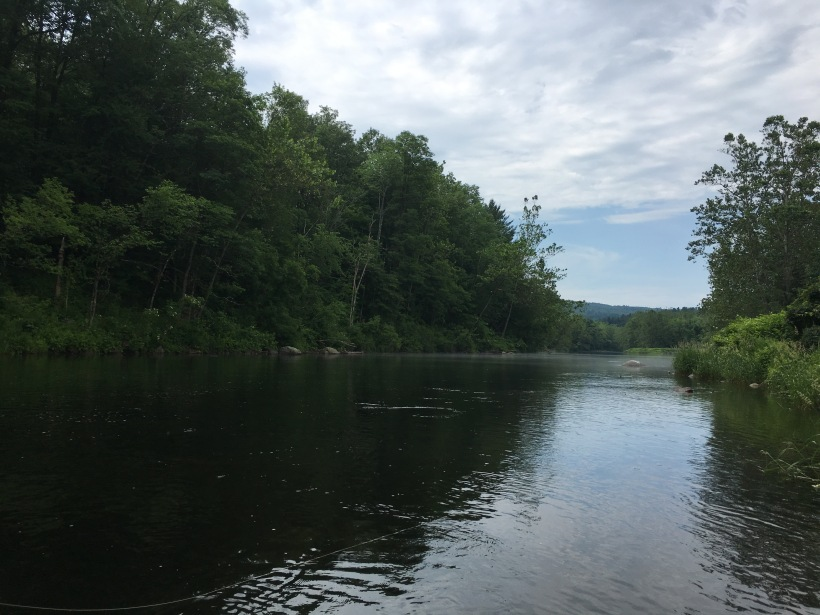 Fly fishing the Farmington River, CT  – William Henry Outdoors