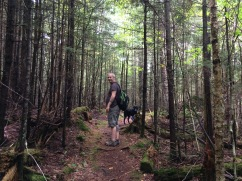 Hiking the Adirondacks.