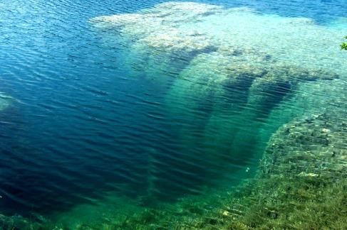 Google image of fresh water reef in Green Lake State Park.